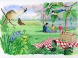 Picnic in a Bluebell Wood CG001