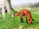 Fox (red) Vulpes vulpes M004