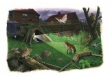 Night Garden Wildlife Watch CG001