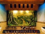 MU011 Jungle - Theatrical Backdrop Mural painted on 20x8m Canvas