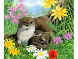 Otter (Lutra lutra) M002